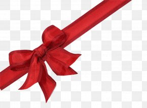 Bow - Gift Card Ribbon Christmas Shoelace Knot PNG