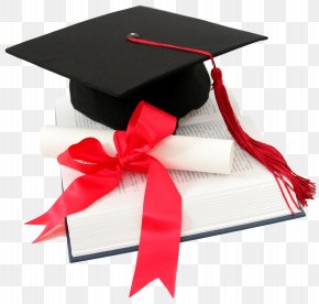 Graduation - Student Diploma Academic Degree Graduation Ceremony Education PNG