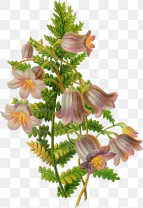 Easter Clip Art Flower Pictures DrawingTiramisu Graphic - Lent PNG