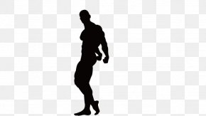 Fitness Silhouette Figures - Fitness Centre Bodybuilding Physical Exercise Clip Art PNG