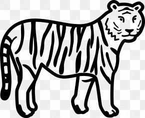 Lion - Coloring Book Bengal Tiger Lion White Tiger PNG