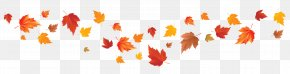 Fall Leaves Image - Autumn Leaf Color Autumn Leaf Color Red Maple Maple Leaf PNG
