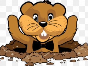 Groundhog Day Animal Figure - Beaver Cartoon PNG