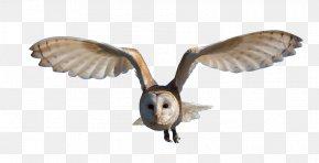 Barn Swallow - Great Horned Owl Bird Clip Art PNG