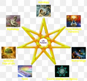 Tree Of Life Tarot - Kabbalah Zohar Astrology Tree Of Life Tarot PNG