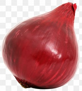 Red Onion Bulb - Red Onion Vegetable PNG