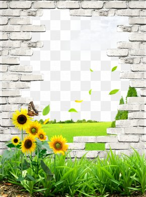 Fresh Illustrations Of Walls And Lawns - Wall Poster Brick PNG