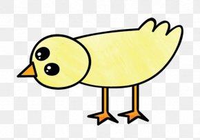Line Art Bird - Yellow Cartoon Beak Bird Line Art PNG