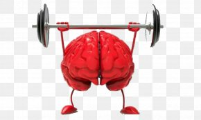 Weightlifting Brain - Brain Size Agy Neuroscience Cognitive Training PNG