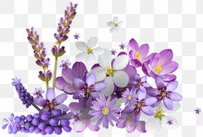 Flower - Flower Internet Explorer Download Clip Art PNG