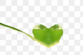 Love Heart - Heart Leaf Computer Wallpaper PNG