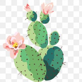 Cactus - 2018 Planner: Diary Of A Cat Lady: Weekly Monthly Planner With Cat Quotes Animation Icon PNG