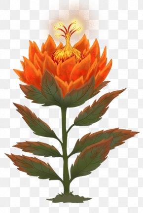 Flower Autumn - Flowering Plant Flowerpot Plant Stem Herbaceous Plant Wildflower PNG