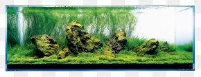 Lush Tree - Aquariums Aquascaping Aqua Design Amano Rock PNG