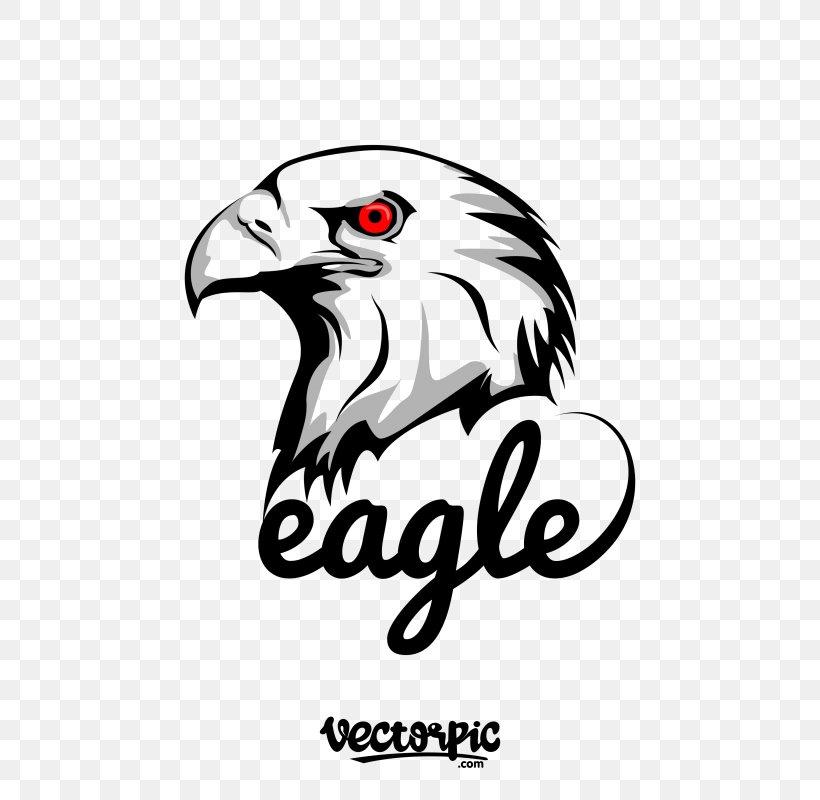 Logo Vector Graphics Eagle Design Coreldraw Png 800x800px Logo Accommodation Beak Bird Bird Of Prey Download