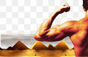 Pyramid Background People - Muscle Management Business Industry PNG