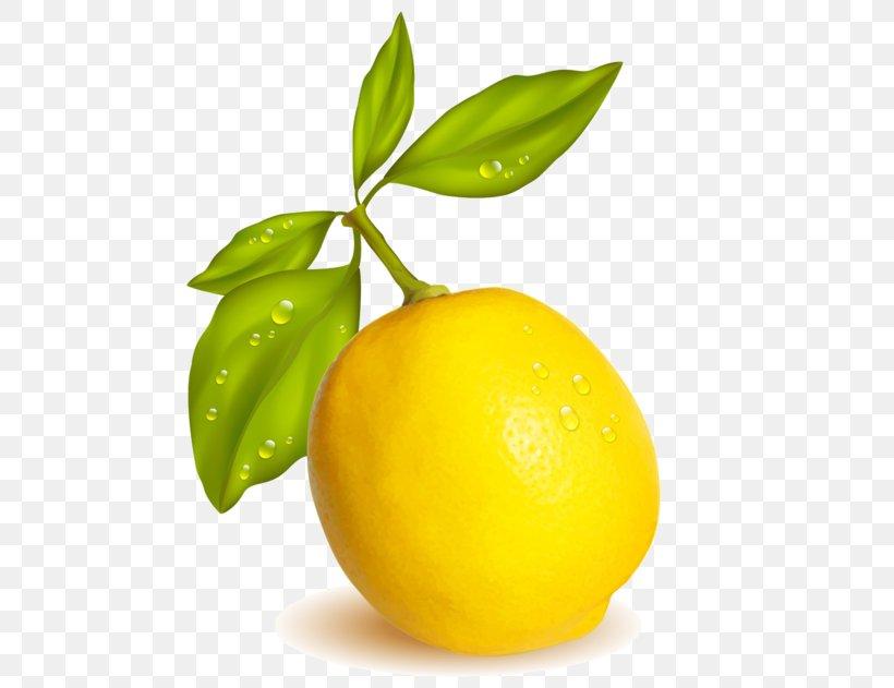 Lemon-lime Drink Meyer Lemon Persian Lime Sweet Lemon, PNG, 600x631px, Lemon, Citric Acid, Citron, Citrus, Diet Food Download Free