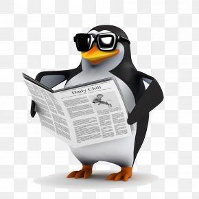 Penguin - Penguin Bird Shutterstock Stock Photography PNG