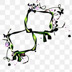 Herbaceous Plant Plant - Leaf Design Plant Stem Plants Flower PNG