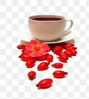 Rose Tea Stock Image - Tea Rose Hip Beach Rose Dog-rose Stock Photography PNG