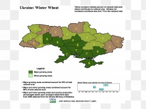 Wheat Fealds - 2014 Russian Military Intervention In Ukraine Agriculture Crop Soybean Production PNG