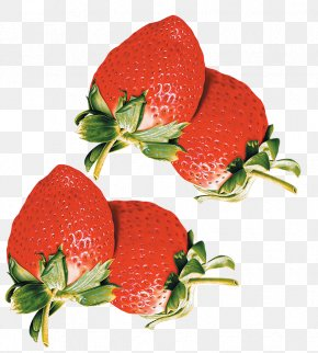 Strawberry - Strawberry Superfood Diet Food Garnish PNG