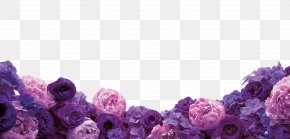 Purple Flowers - Floral Design Cut Flowers Purple Wallpaper PNG
