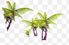 Green Simple Coconut Tree Decoration Pattern - Coconut Tree Arecaceae PNG