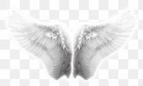 Wings, Angel Wings, Taobao Creative Wings Effects - Angel Wing Icon PNG
