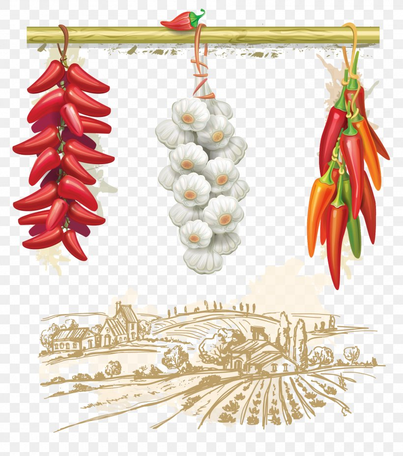 Royalty-free Stock Photography Clip Art, PNG, 1800x2039px, Royaltyfree, Art, Capsicum, Chili Pepper, Christmas Download Free