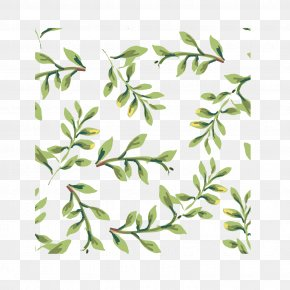 Green Plant Vector Material - Plant Textile Green Pattern PNG