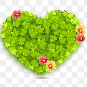 Heart - Green Heart Love Wallpaper PNG