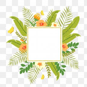 Tropical Plants - Tropics Flower Clip Art PNG