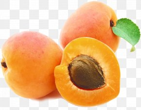 Apricot - Apricot Oil Apricot Kernel Carrier Oil PNG