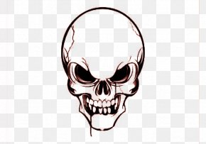 Skull - Skull Euclidean Vector Clip Art PNG