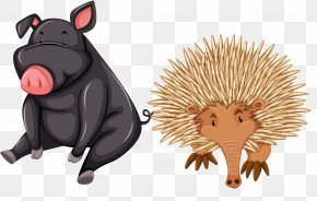 Vector Wild Boar Hedgehog Material - Letter Stock Photography Word Royalty-free PNG