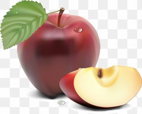 Realistic Apple Vector - Fruit Blueberry Cicadas PNG