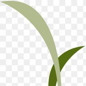 Campus Wind - Leaf Logo Grasses Font PNG