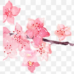 Pink Hand-painted Watercolor Cherry Blossoms - Pink Cherry Blossom Watercolor Painting PNG