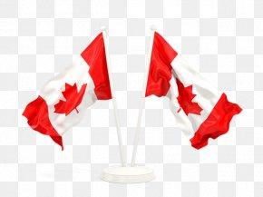 Flag - National Flag Flag Of Canada Flag Of Ireland Flag Of Belarus PNG