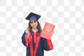 Academician Academic Dress Graduation Ceremony Doctor Of Philosophy Academic Degree PNG