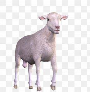 Goat - Goat Animal Easter PNG