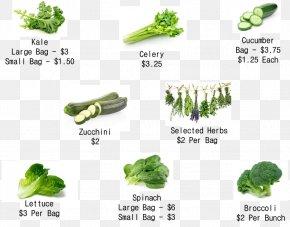 Broccoli Sprouts - IHerb Douchegordijn Leaf Vegetable Superfood PNG
