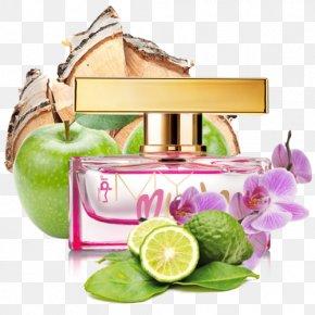 Perfume - Perfume Eau De Parfum Deodorant Fougère Make-up PNG