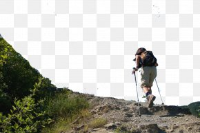 Travel Sport Climbing - Mountaineering Tourism Download Sport PNG