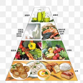 Food Pyramid - Nutrient Food Pyramid Eating Nutrition PNG