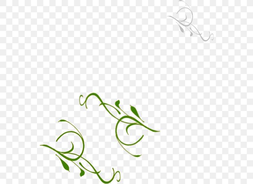 Leaf Green Plant Stem Vine Clip Art, PNG, 564x597px, Leaf, Artwork, Branch, Flora, Flower Download Free