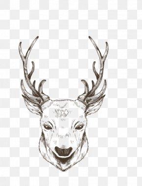 Painted Black Lines Christmas Reindeer - Reindeer Christmas PNG