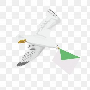 Vector Pattern Flying Pigeon Pigeon - Homing Pigeon Bird Pigeon Post PNG