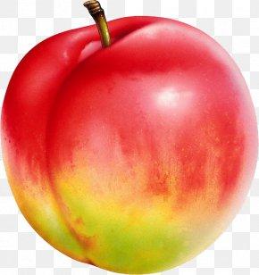 Peach - Nectarine Saturn Peach Auglis Food U674eu5b50 PNG